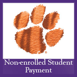 Non-enrolled Student Payment