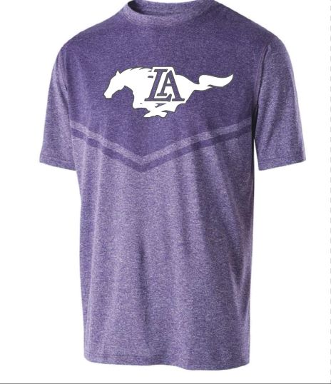 """LIMITED EDITION""  Youth Chevron Dri-Fit  Purple or Grey"
