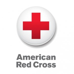 4c35b2d26c9d Course Description. The purpose of a review session is to give CURRENT  American Red Cross certified Lifeguard Instructors ...