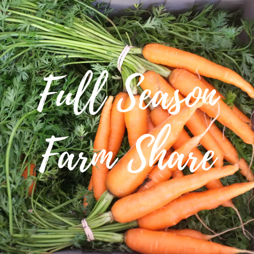 Full Season Farm Share (20 weeks)