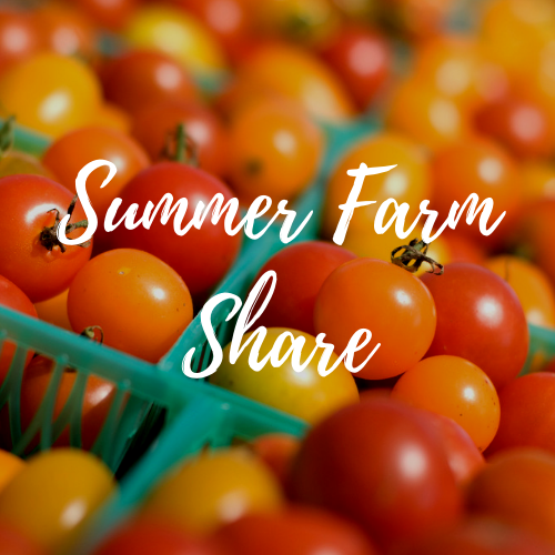 Summer Season Farm Share (10 weeks) - Early Bird